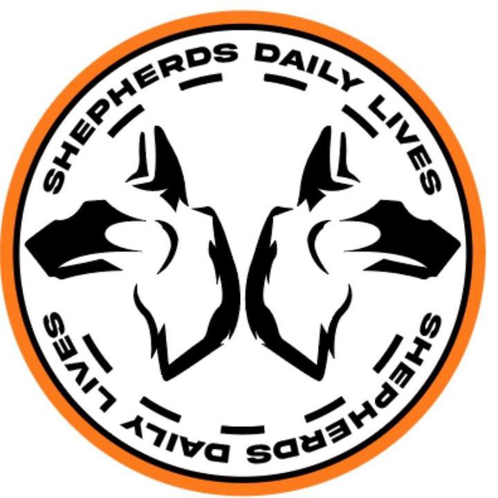 original sound - shepherdsdailylives TikTok