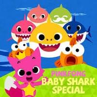 baby shark (cute or metal) TikTok