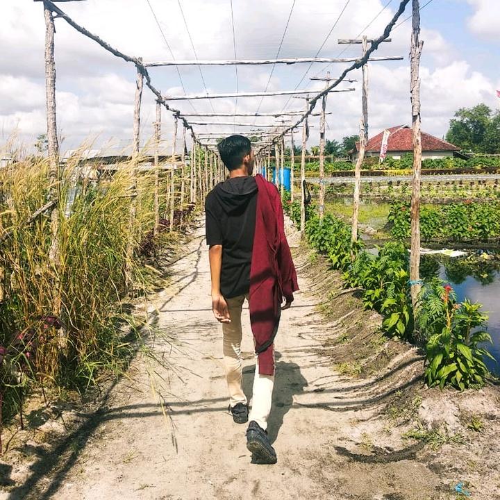 Potong Bebek Angsa (remix) TikTok