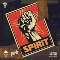 Spirit TikTok