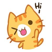 Say Meow tiktok