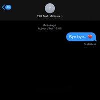 Bye Bye TikTok