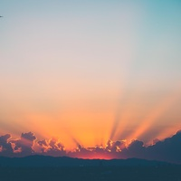 Sunset Vibes TikTok